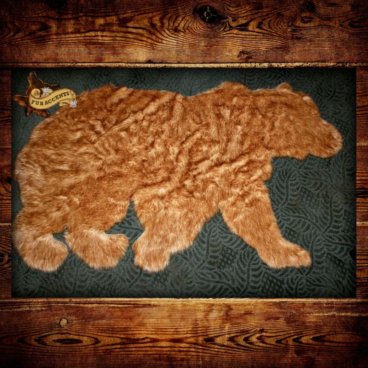 Related Keywords & Suggestions For Kodiak Bear Rug