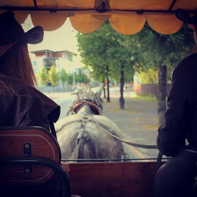 Tilaa hevoskoulutus.fi sivuston uutiskirje!
