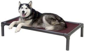 Chew proof Kuranda dog bed husky