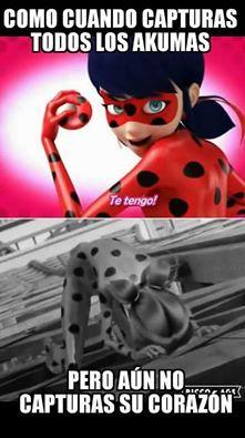 Foto de Fans de Miraculous Ladybug.