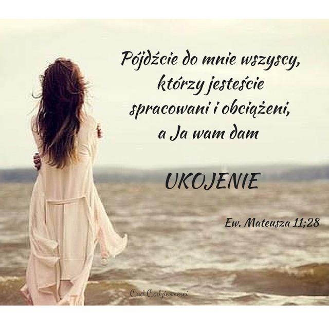 Pójdźcie do mnie wszyscy, którzy jesteście spracowani i obciążeni, a ja wam dam ukojenie Ew. Mateusza 11;28 Werset Biblijny Cytat