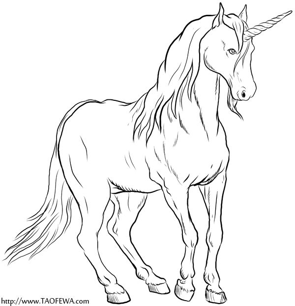 beautiful unicorn coloring pages - photo#17