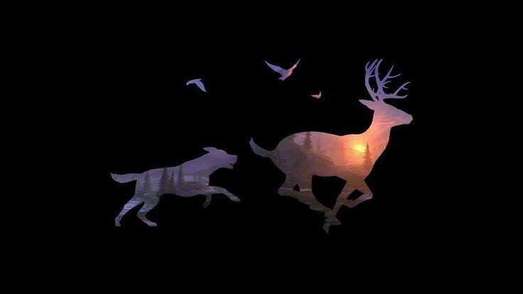 No caption . . . . . #deer #hunter #hunt #huntingtonbeach #hunting #forest #deerhunter #huntinglife http://misstagram.com/ipost/1554243648832671696/?code=BWRyF0nFA_Q