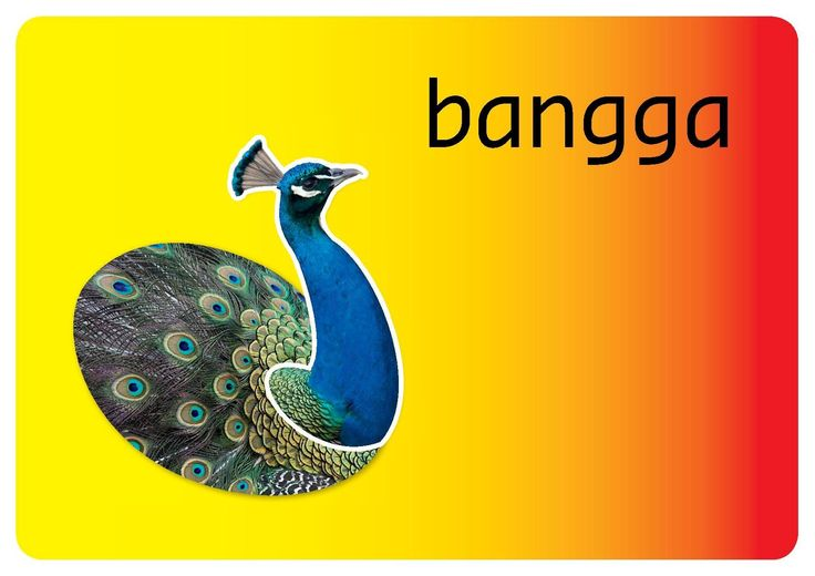 Bangga = proud What can I do to feel proud?  #emotions www.lekkerinjevelspel.nl