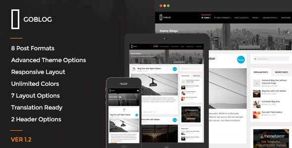 GoBlog - Responsive WordPress Blog Theme  #themeforest