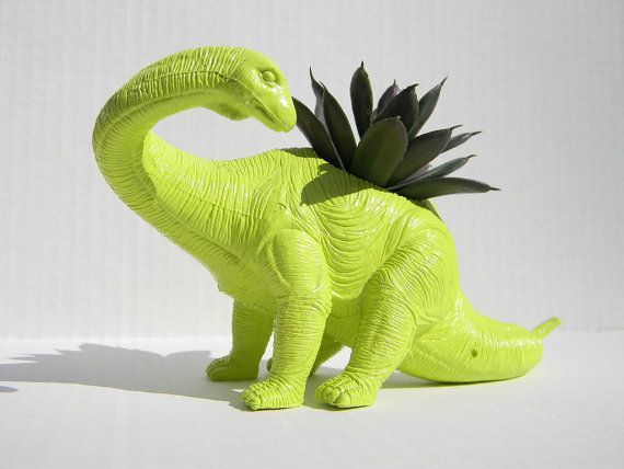 Dinosaur Planter. Yup.