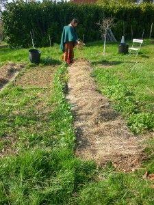 Commencez un potager sur une parcelle enherbée grâce à un mulch !