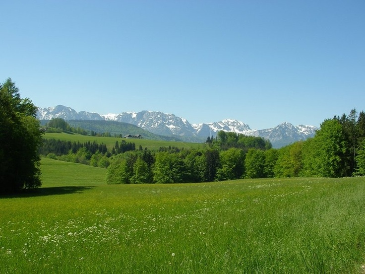 Höllengebirge, Upper Austria, Austria