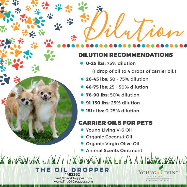 You can even use pure therapeutic grade essential oils on your favorite furry pet! http://www.theoildropper.com/essential-oils-for-your-dogs/
