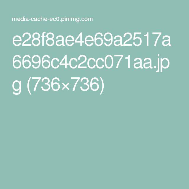 e28f8ae4e69a2517a6696c4c2cc071aa.jpg (736×736)