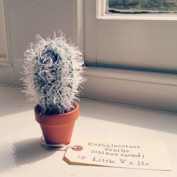 little_v_and_me crochet cactus