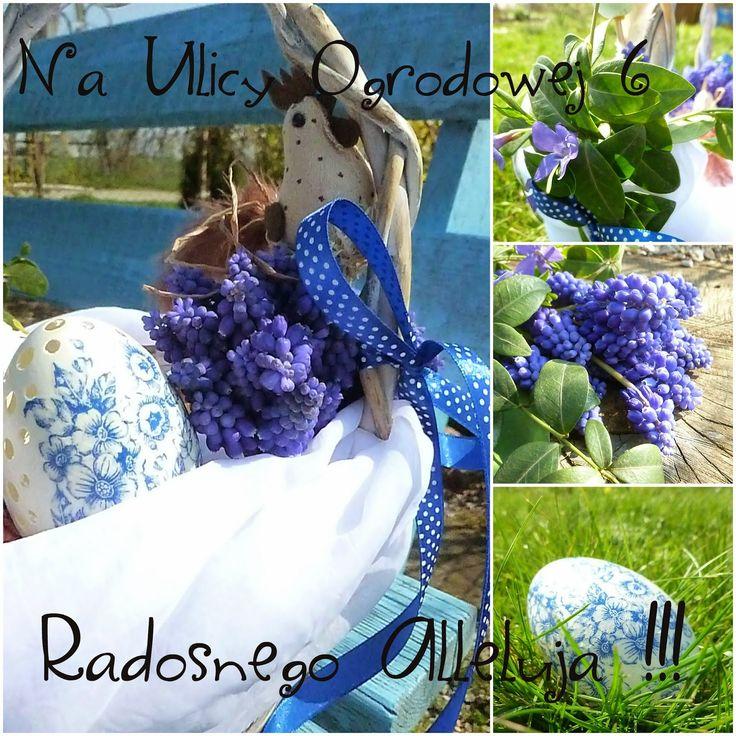 Na Ulicy Ogrodowej 6: Życzenia w kolorze niebieskim...