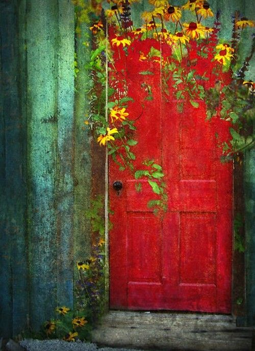 red door and yellow flowers.
