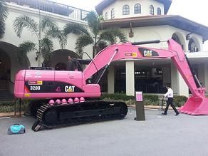 CAT Pink Hydraulic Excavator. If I had a contracting company! :)