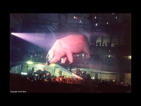 Pink Floyd LIVE ~ SHEEP ~ Rowdy Cleveland Show ~ Animals Tour 1977 ! - YouTube