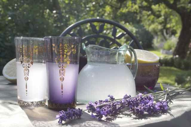 Trädgårdsflow: Leta efter resultat för lavendel       #LavenderLover