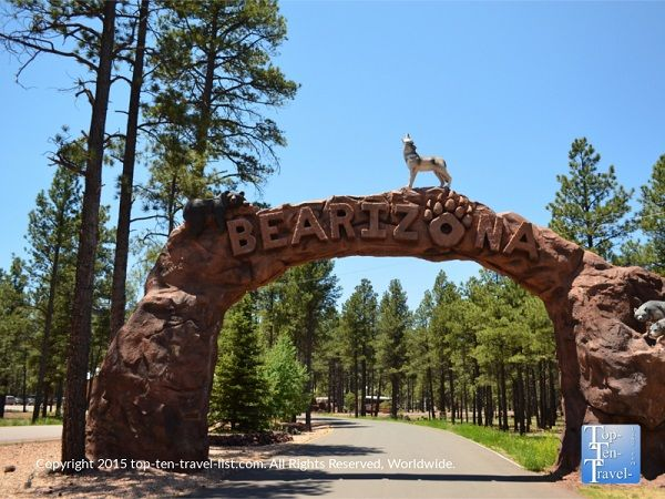 Bearizona, a drive-thru #wildlife park in Williams, AZ, is a great side trip for anyone visiting the Grand Canyon. #Arizona