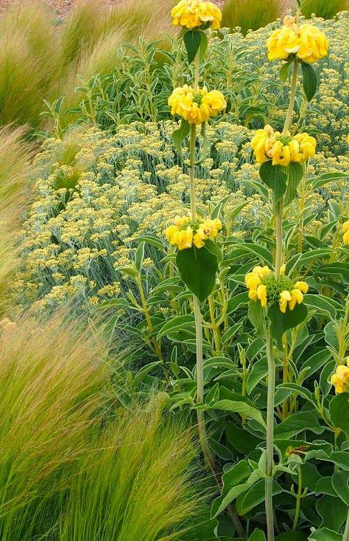 Find This Pin And More On Lugares Que Visitar. Jardin Toledo Mediterranean  Garden ...