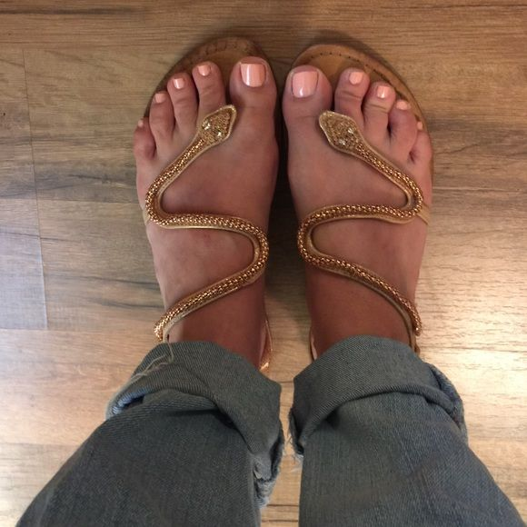 Antonio melani gold snake sandal Antonio melani gold snake sandal, great condition size 6.5 ANTONIO MELANI Shoes Sandals