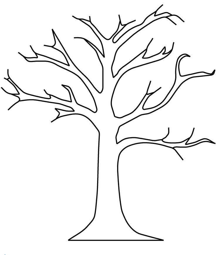 apple tree templatedgn apple tree without leaves coloring pages - Apple Tree Coloring Page