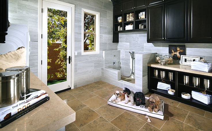 add a pet suite. Room with door to outside, pet shower, sink, separate small washer/dryer, storage. LOVE Avignon At Blackstone - Brea Home for Sale | Standard Pacific Homes