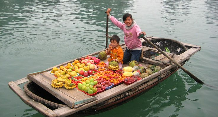 Children in Ha Long Bay like local vendors. #vietnam #halongbay #travel #tourism