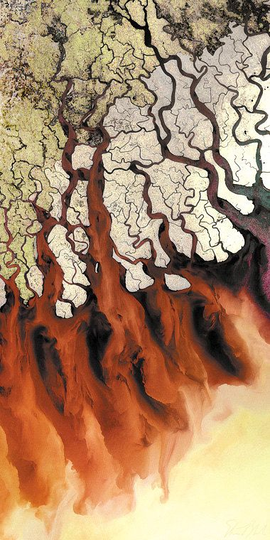 """GANGES RIVER DELTA (India): Print only and ready to hang pieces of """"Monsoon Spirit of the Tiger"""" by satellite image artist Stuart Black"""