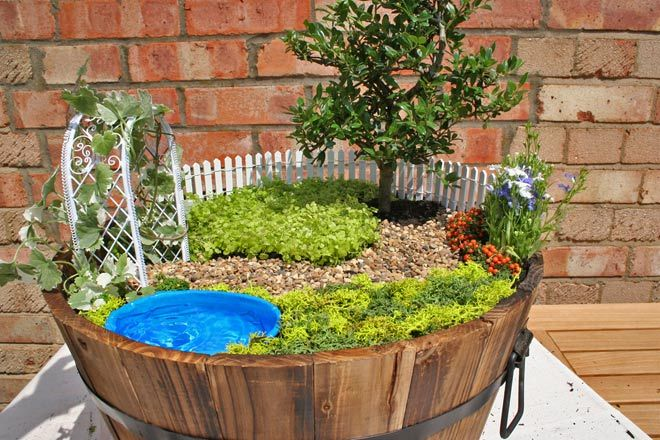 16 best images about nature is my home on pinterest for Mini garden pool