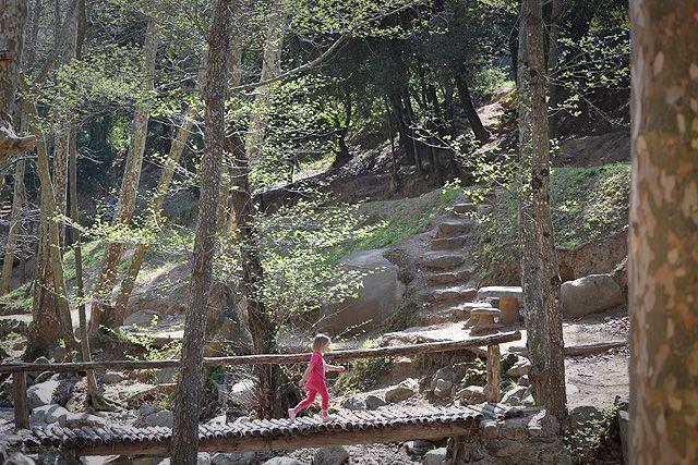 Zona de pícnic dentro del Parque Natural del Montseny