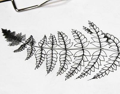 "Check out new work on my @Behance portfolio: ""Эскиз татуировки. Папоротник."" http://be.net/gallery/37278521/eskiz-tatuirovki-paporotnik"