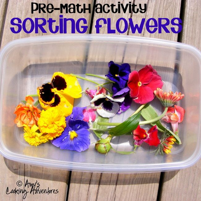 Featured 5 Spring Projects: Math Activity For Preschoolers