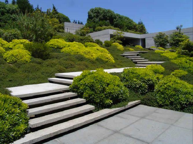 Papudo garden by Juan Grim.