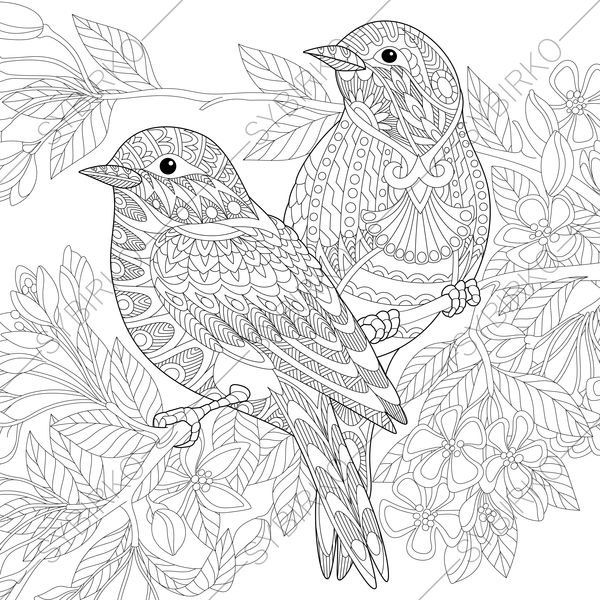 Coloring Pages For Adults Lovely Birds Couple Spring Etsy Bird Coloring Pages Animal Coloring Pages Animal Coloring Books