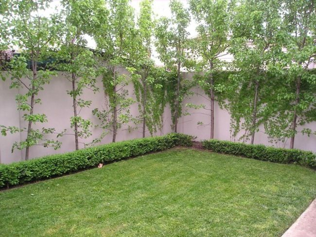 44 Best Courtyard Garden Images On Pinterest Backyard Landscape Design Backyard Landscaping