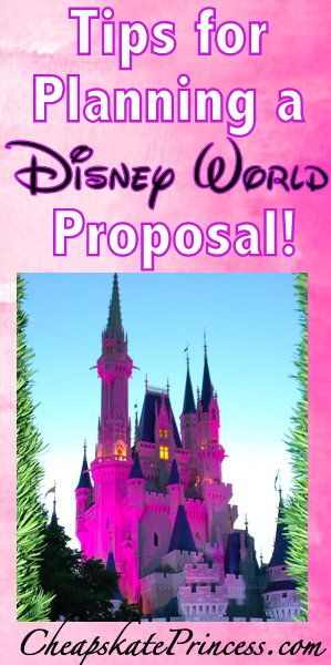 36821e79185 Planning a Disney World Proposal  A Cheapskate Princess Guide Disney  weddings are expensive but an Orlando proposal can be 100% free!