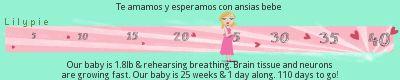 mis 21 semanas de embarazo