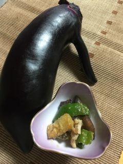 阿蘇郡高森町のブランド茄子肥後ムラサキを使って豚肉とピーマンの味噌炒めをして食べましたご飯が進みます肥後ムラサキは生でも食べれますのでフライパンで炒める時間も短縮できます肥後ムラサキ美味しいですよー    肥後ムラサキ茄子のレシピ  http://ift.tt/2sTuSpO]