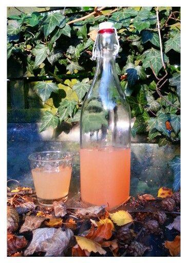 APPELSAP Ingrediënten: - 2 kilo rijpe, zoete appels - zoveel water als nodig om de appels onder water te zetten - eventueel suiker of zoetstof. Bereiding: Snij de gewassen appels in stukken. Verwijder de rotte stukken. Breng ze met schil en klokhuis en al aan de kook met het water en laat ze ongeveer 1 uur koken. Giet dan de appels met het vocht door een zeef met een kaasdoek/theedoek en laat het sap minstens 1 uur goed uitlekken. Druk af en toe met de rug van een pollepel het sap uit de…