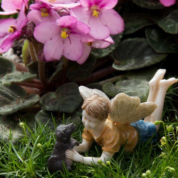 Fairy Ross and Winston - efairies.com