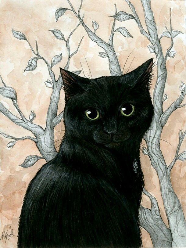 43 best gatos images on Pinterest | Gatos, Patchwork y Pintar