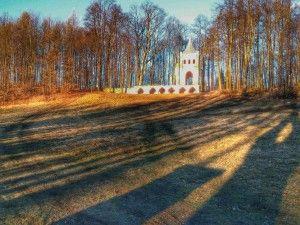 Ruiny Opactwa Bukowiec