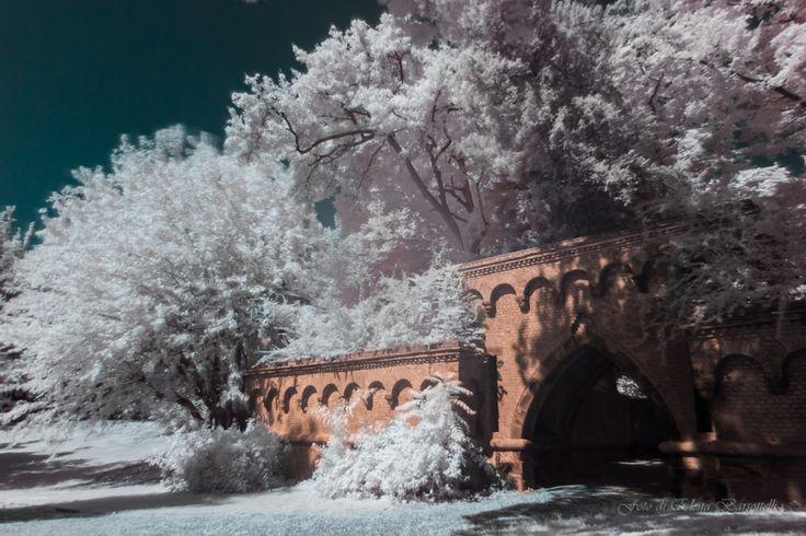 I giardini del Parco #infrared #infrarosso #parco #monza