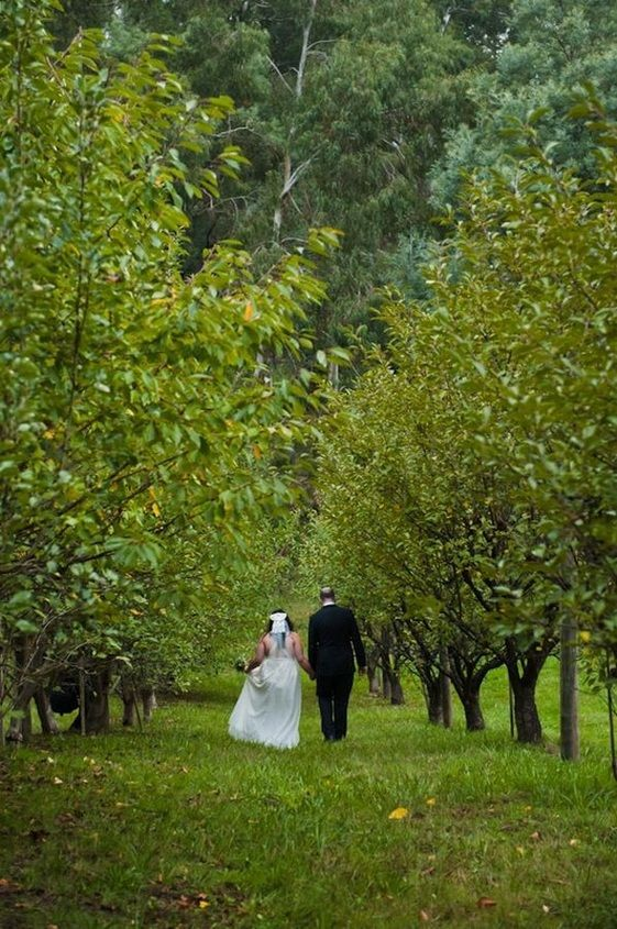 Green wedding, nature, Melbourne, Yarra Valley, indie wedding inspiration