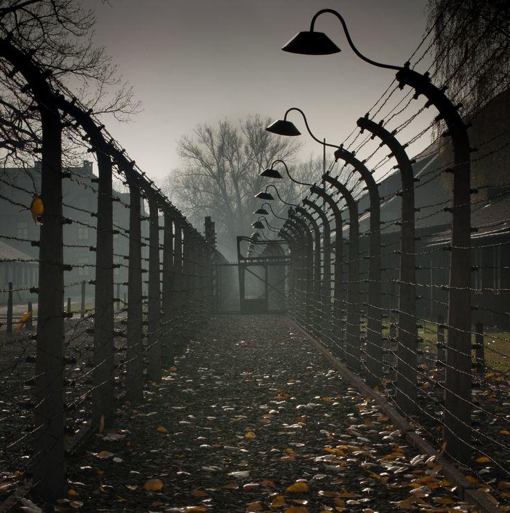 Fences of Auschwitz I.
