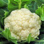 Ποια ειναι τα 15 πιο καθαρα, χωρις φυτοφαρμακα, τροφιμα