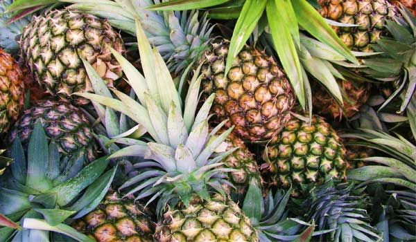 Pineapple - Nutrition Facts