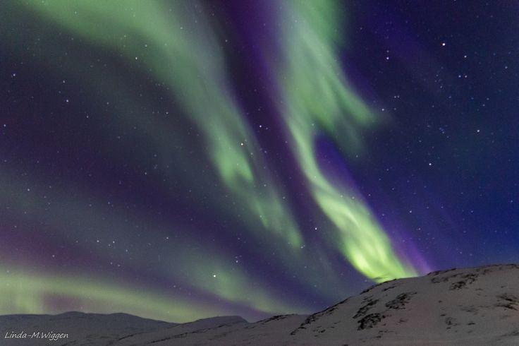 Aurora dancing -