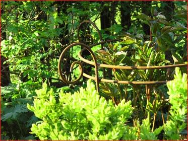 Für breite Horste sind stabile Staudenhalter empfehlenswert. http://www.gartenbijoux.ch/cms/webshop/staudenfreunde.html?tt_products[pp]=11=59dc8d6a6c776adf6db1d6d06a5e7eec  GARTENBIJOUX - Das Besondere für Ihren Garten