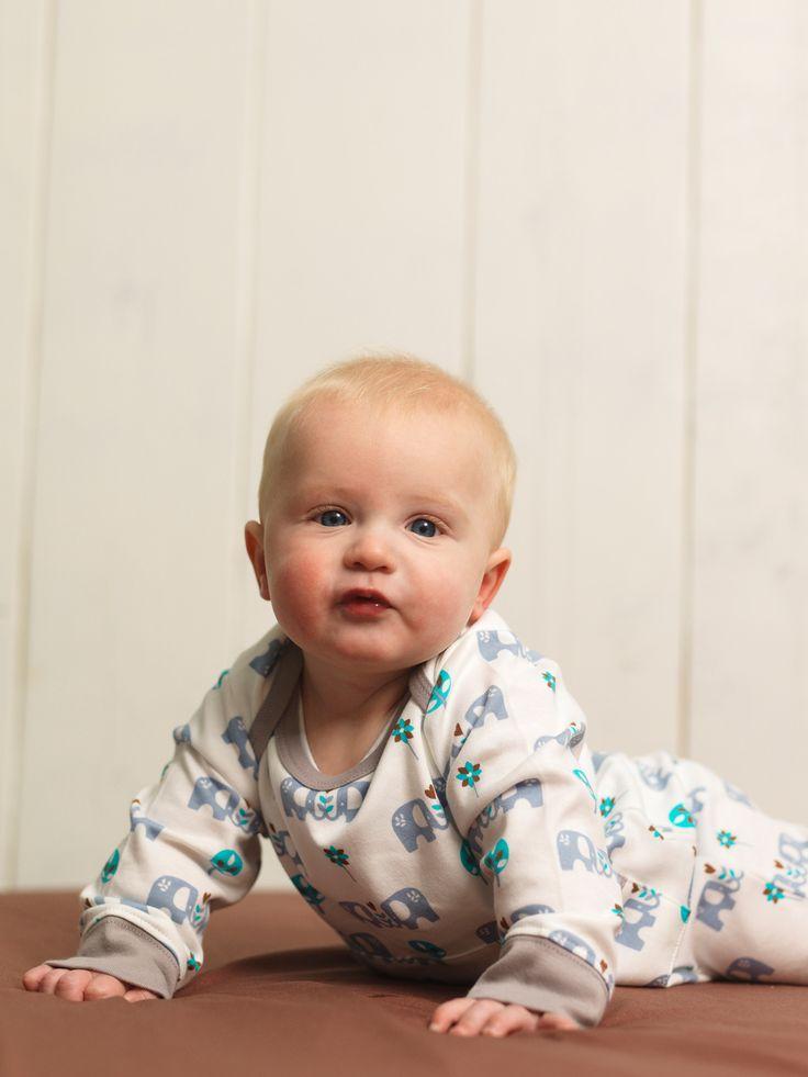 http://www.applepie.eu/shop/abbigliamento-bimbo/pigiama-in-cotone-bio-elefante-azzurra/