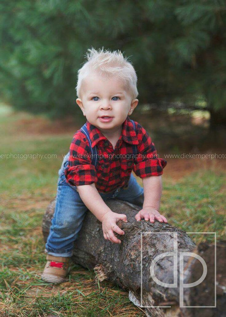 one year photo session. lumberjack. party. pictures